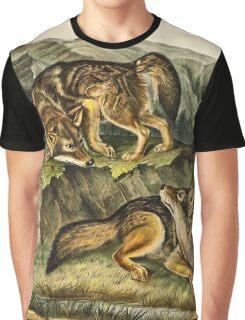 John James Audubon - Canis latrans, Say  Prairie Wolf  Males  1 3 Natural Size1845  Graphic T-Shirt