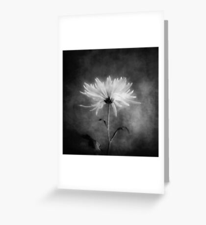 Autumn Mum in Black and White Greeting Card