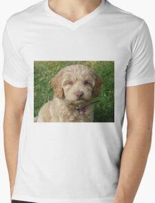 Winnie Mens V-Neck T-Shirt