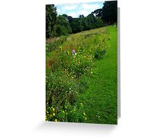 Wild Flowers in the Park Greeting Card