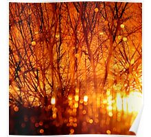 Amber Rain....Abstract Poster