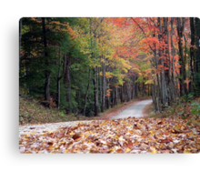 Poga Autumn Canvas Print