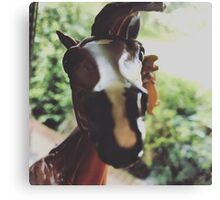 Firefly The Horse Canvas Print