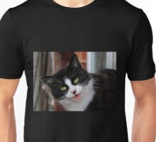 Stray Cat in the Window Box Unisex T-Shirt