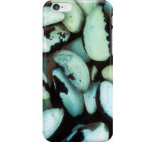 Brazil nuts iPhone Case/Skin