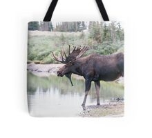 Thirsty moose a Thursday morning Tote Bag