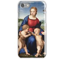 Raphael - Madonna of the Goldfinch (1505 - 1506)  iPhone Case/Skin