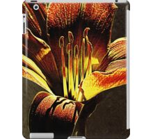 Abracadabra Shadows iPad Case/Skin