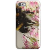 Bumble Bee On Sedum iPhone Case/Skin