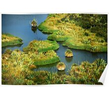 The Swamp..........New Zealand Poster