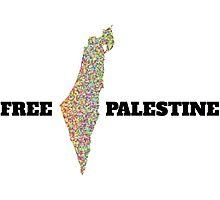 FREE PALESTINE MAP Photographic Print