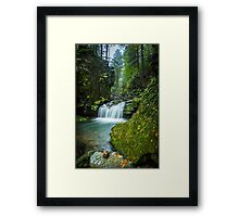 Among The Green Rocks Framed Print
