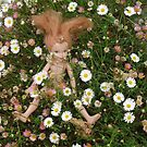 Fairy in the daisies by Carol Dumousseau