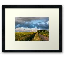 Backroad between the fields Framed Print