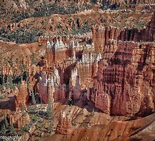 Bryce Canyon Overlook  by John  Kapusta