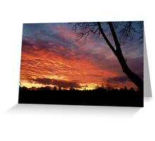 Startling Sunset Greeting Card