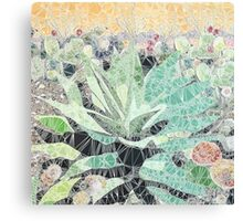 Spider Visits  Canvas Print