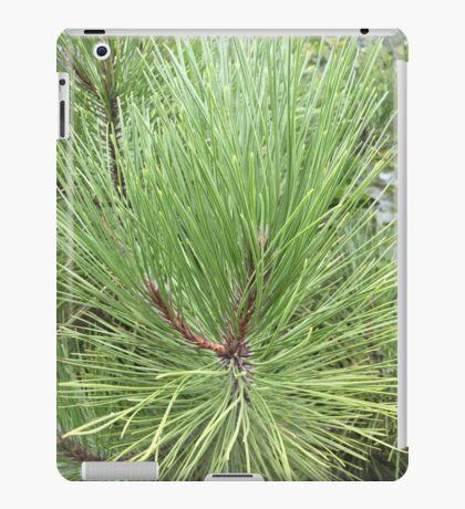 Magestic Pine iPad Case/Skin