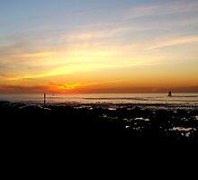 Mouille Point Sunset by Vanessa  Warren