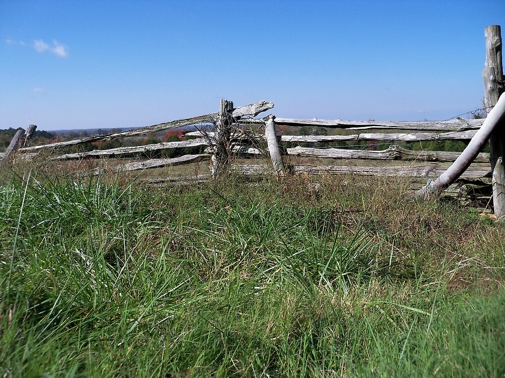 Weathered Fences by Ann Allerup