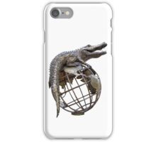 On Top Of The World Transparent iPhone Case/Skin