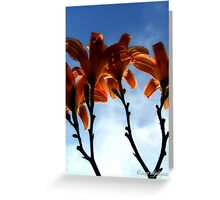 The Real Lilies Greeting Card