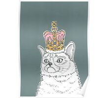 Grumpy Cat In A Crown Poster