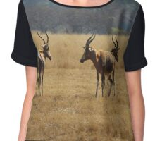 The Safari Chiffon Top