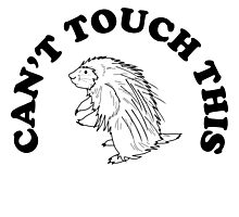 Can't Touch This - Porcupine Photographic Print