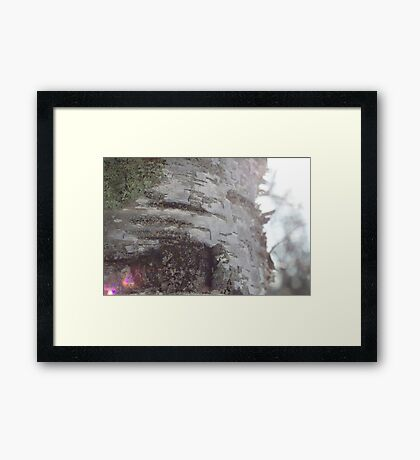 When Nature is Magic Framed Print