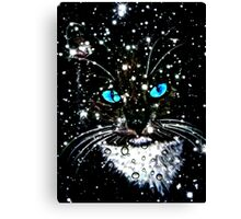 Winter Kitten Canvas Print