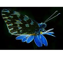 Fractal Purity Angel Photographic Print