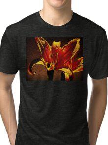 Pair Of Parapsychological Perennials Tri-blend T-Shirt