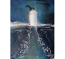 Seabird on piling in oils Photographic Print