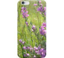 Bloomin'  Bushes iPhone Case/Skin