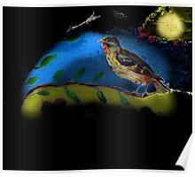 Bird in moonlight Poster