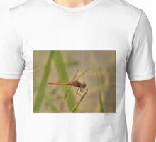 The balancing Amberwing Unisex T-Shirt