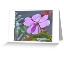 Purple Shadows Greeting Card