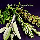 Parsley Sage Rosemary and Thyme by Dana Roper