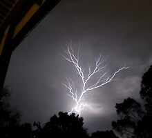 Lightning Strike by Thomas Stayner