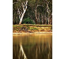 Murray River Richness Photographic Print