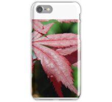 Autumn Comfort iPhone Case/Skin