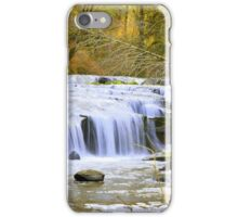 Small Falls along Sweet Creek Falls Trail iPhone Case/Skin