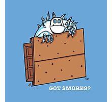 Got Smores? Photographic Print