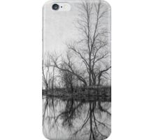 Seeing Double iPhone Case/Skin