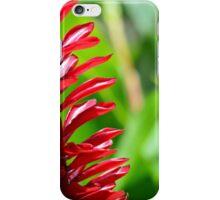 Fijian Colours iPhone Case/Skin