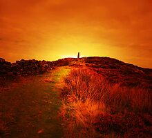 WUTHERING HEIGHTS by leonie7