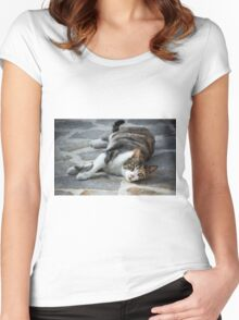 Cosy Kitten Women's Fitted Scoop T-Shirt