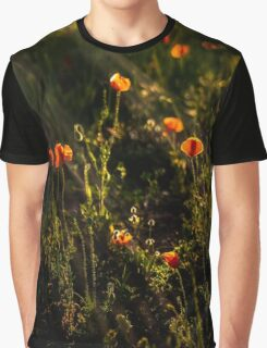 Vivid poppies at sunset Graphic T-Shirt
