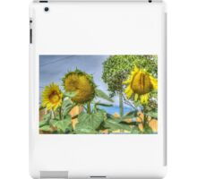 Trio of Sunflowers iPad Case/Skin